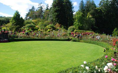 Conseils pour un beau jardin